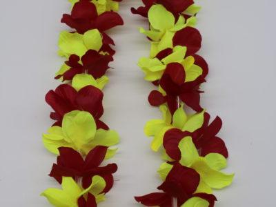 Hawaii kaelaehe