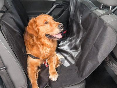Istmekate autosse lemmiklooma jaoks 140*120cm