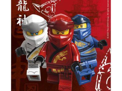 Lego ninjago salvrätikud 20tk 33*33cm